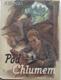 Pod Chlumem : příběhy dvou chlapců za světové války