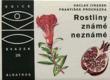 Rostliny známé neznámé : Na návštěvě v rodině cizích užitkových a jiných zajímavých rostlin